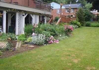 Backyard Replant - Before