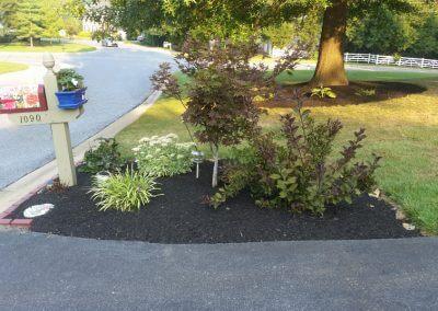 Improved Home Landscaping