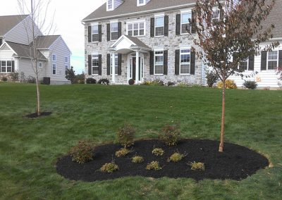 home landscaping complete