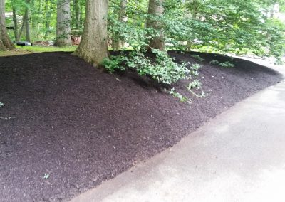 Mulched Road Bank